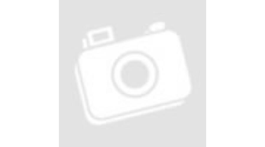 Gigabyte Z370 Raid